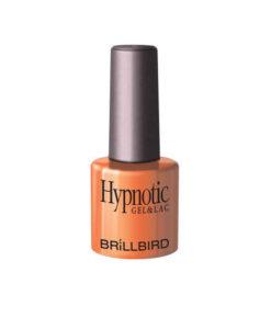 Hypnotic11