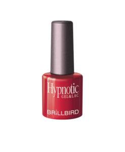 Hypnotic8