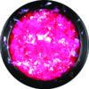 neon-pink-14000