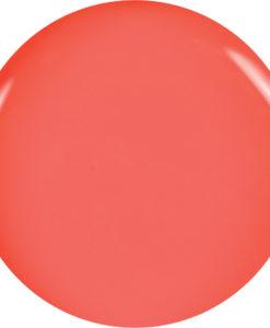 brillbird_color__4f670facb4a86