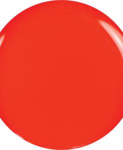 brillbird_color__4f670fc70dc10